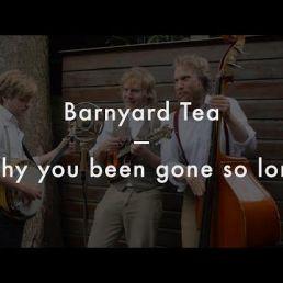 Barnyard Tea