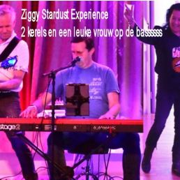 Coverband Ziggy Stardust Experience