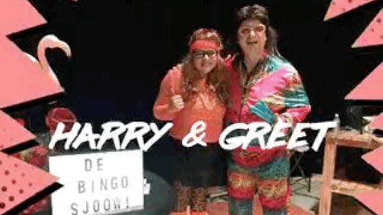 Karakter/Verkleed De Meern  (NL) Harry en Greet Foute Bingo act