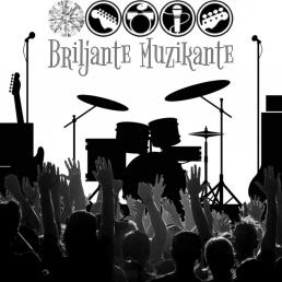 Band Nederasselt  (NL) Brilliant Musician