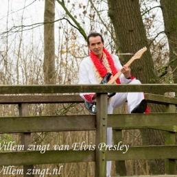 WILLEMZINGT-GOUD VAN OUD ELVIS