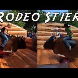 Rodeo Stier