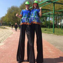 Animatie Heinenoord  (NL) Tropische Steltlopers