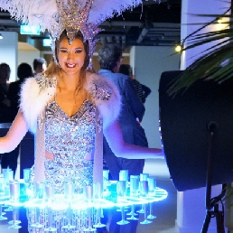 Animatie Oosterhout  (Noord Brabant)(NL) LED Champagne