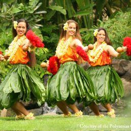 Hawaiian Hula Workshop