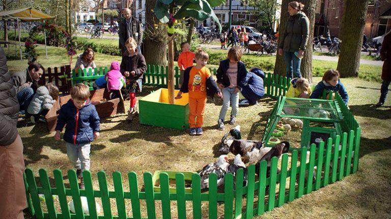 Kinderboerderij op locatie