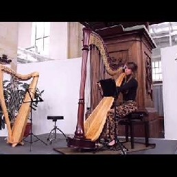 Harp background music
