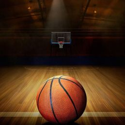Trainer/Workshop Amsterdam  (NL) Basketbal show en/of clinic