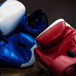 Trainer/Workshop Amsterdam  (NL) Boxing show and/or clinic