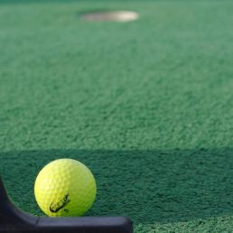 Trainer/Workshop Amsterdam  (NL) Minigolf Clinic