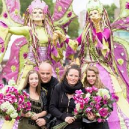 -Flower Fairies - Flower Fairies