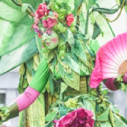Groene Fee en de Bloemengeisha's