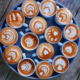 Barista Nijmegen  (NL) Latte Art