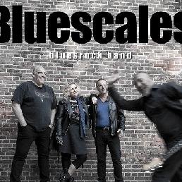 Band Amstelveen  (NL) Bluescales
