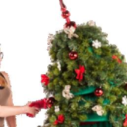 Wandelende Kerstboom Rojo