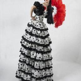 Flamenco Spaanse steltenlopers