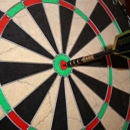 Sports/games Amersfoort  (NL) Darts