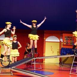 Circusvoorstelling