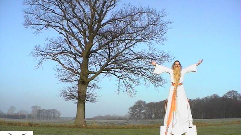 Steltenloper: Druide