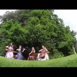 Het Strijkkwartet