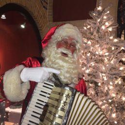 Accordionist Hazerswoude Rijndijk  (NL) Musical Santa with Accordion