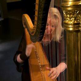Harpist Doornspijk  (NL) Regina Ederveen harpist/harpiste