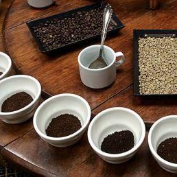 Proeverij Emmen  (NL) Koffieproeverij