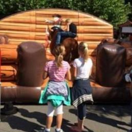 Event show Heinenoord  (NL) Rodeostier