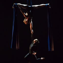 Aerial Duo: Falling from the sky