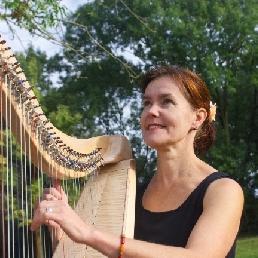 Harpist Leuvenheim  (NL) Keltische harp huiskamer concert