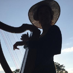 Harpist Leuvenheim  (NL) Troubadour harp