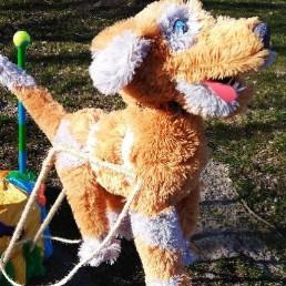 Clown Almere  (NL) Rex de vliegende hond-mobiele clownsact