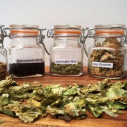 Tasting Heemstede  (NL) Beer tasting with a twist