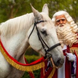 Character/Mascott Dordrecht  (NL) Sinterklaas - Sinterklaas en Pieten