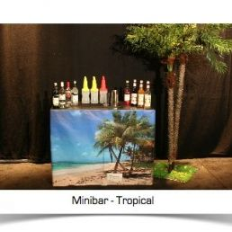 Cocktailbar - Minibar
