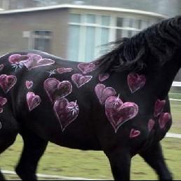 Actor Sleeuwijk  (NL) Horses BodyPainter