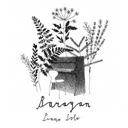 Pianist Amsterdam  (NL) Baragan ★ Piano Solo