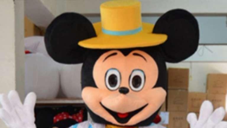 Spiksplinternieuw Mickey Mouse en Minnie Mouse Boeken? Direct op ShowBird.com! CC-96