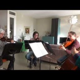 La Strada Strings