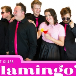 First Class Flamingos