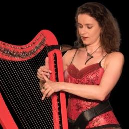 Elektrische harp Janu