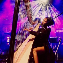 DJ Gent  (BE) ZEM DJ met live electric harp & vocals