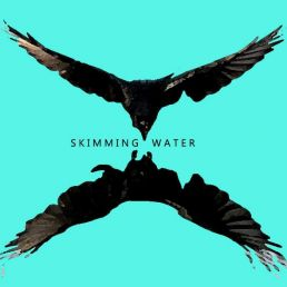 Skimming Water - solo optreden met loopstation