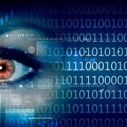 Cybercrime, Internetfraude, Indenteitsfraude
